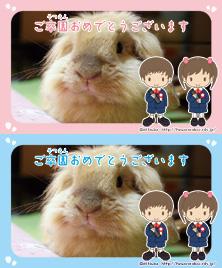 卒園おめでとうメッセージカード/名刺サイズ/フレームタイプ【男の子/女の子】