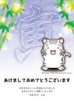 年賀状2010年06(トラ:ホワイトタイガーたてがみ男の子)